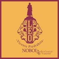 Leo Club Vicente Piedrahita-Nobol