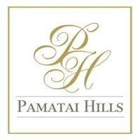 Pamatai Hills