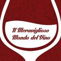 Il Meraviglioso Mondo del Vino