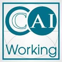 CAI Working