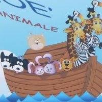 L' Arca di Noè - Le Piazze