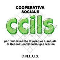 CCILS