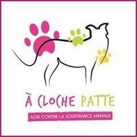 A Cloche Patte
