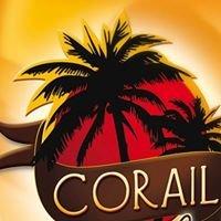 Corail salon soleil