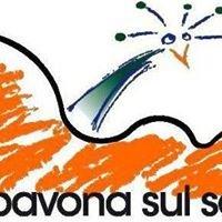 La Pavona sul Sofà