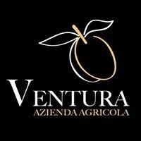 Azienda agricola Ventura