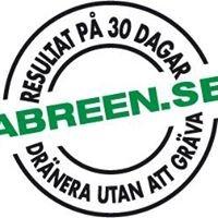 Abreen