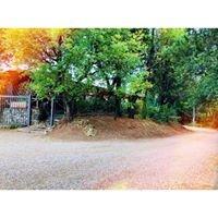 Ristorante Nuovo Ranch di Greco Ciro & Co