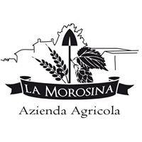 Azienda Agricola -  Birra Agricola - Agribirrificio La Morosina