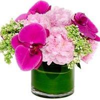 Krystyna's Flowers Chicago