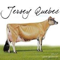 Jersey Québec