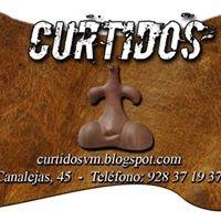 Curtidos