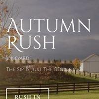 Autumn Rush Vineyard