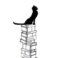 Equilibri Libreria Prato