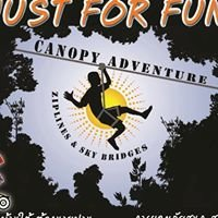 Just for Fun - Canopy Adventure
