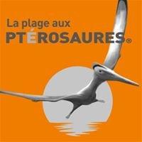 La Plage aux Ptérosaures