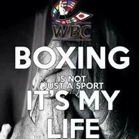 Clem Jones Centre Boxing Club Inc.