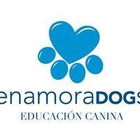 EnamoraDogs Educacion Canina