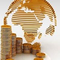 Consultant Afrique
