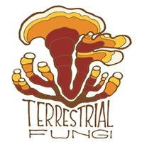 Terrestrial Fungi