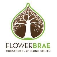 Flower-Brae Chestnuts