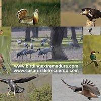 Birdingextremadura