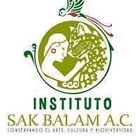 Instituto Sak Balam AC