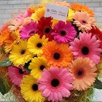 Gėlės Utenoje į namus ar biurą