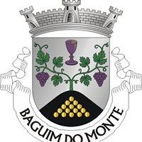 Junta de Freguesia de Baguim do Monte