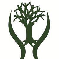 Mthimkhulu Community Development - Program of The Grail Centre Trust