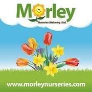 Morley Nurseries