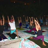 Yoga by the Sea VI
