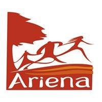 Ariena