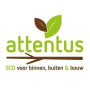 Attentus