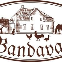 Bandavas