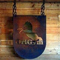 OriGym
