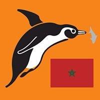 Polo Sub Maroc - Representant officiel