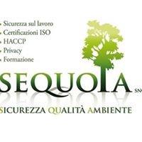 SEQUOIA snc - Sicurezza Qualità Ambiente