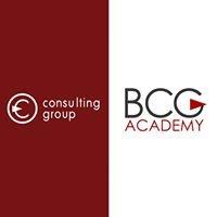 """Консалтинговая компания """"BCG-Academy"""""""