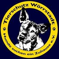 Tierschutz Wörrstadt - Hunde suchen ein Zuhause e.V.