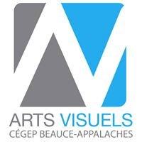 Arts visuels / Cégep Beauce-Appalaches