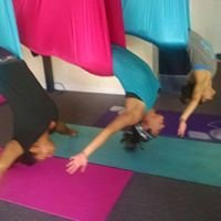 Hot Bodies Pilates & Aerial Yoga Fitness