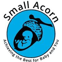 Small Acorn