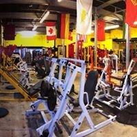 Flex 'n' Tone Gym