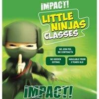 Impact Combat & Fitness