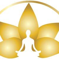 Yoga Tree of Life &Massage