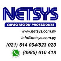 NETSYS - CAPACITACION