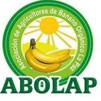 Asociación De Agricultores De Banano Orgánico La Paz - Batangrande