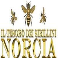 Il Tesoro dei Sibillini - Norcia