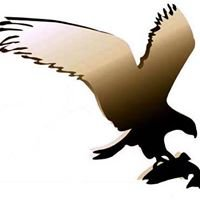 Fish Eagle Safaris
